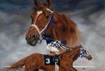 Racehorses    :)