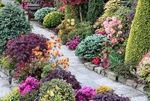 How does your Garden Grow?? / Flowers that make us feel good, because of their Beauty & Smell, and Garden decorations.