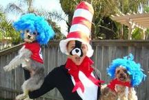 Cat in the Hat Costume Ideas / Here's a collection of the coolest Cat in the Hat costume ideas. Our annual Halloween Costume Contest is ON!  Every year we run the Web's biggest homemade costume contest ($1500 in prizes, $500 Grand prize). Submit your homemade costume here: http://bit.ly/SubmitCostume / by CoolestParties