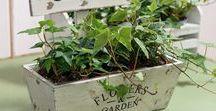 Wyjątkowy ogród / Miejsce, w którym dzięki naszym dodatkom całkowicie odmienisz swój ogród.