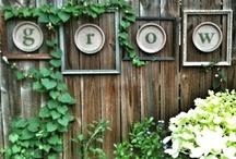 Gardening &Outdoor decor / by Shawna Slye