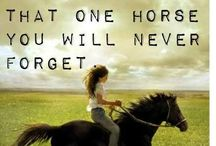 <3 Eventing  / by Brittany Spicer