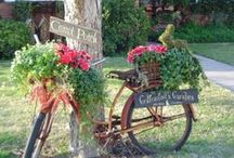 Landscaping - yard decor / by Michele