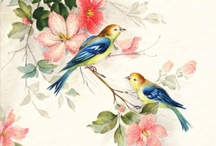 Free Vintage Bird Graphics / Sharing vintage, antique clip art of birds.  Collection of color, and black & white drawings of birds.  Free vintage graphics of birds. / by Fab N' Free