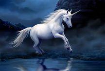 Horses and Unicorns / All about Horses and Unicorns