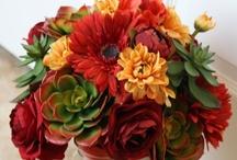 Wedding: Vintage Desert / Colors: deep red, pistachio, white, pale gold // Theme: desert, rustic, retro, eco-friendly // Inspirations: the Sonoran Desert, succulents, poppies, mason jars, historical sites.