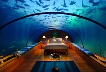 Visit: I Want to Go to There