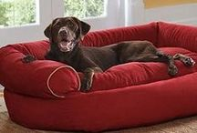Pampered Pets / Keep your animal companions cozy and comfortable with our collection of pet beds and supplies.