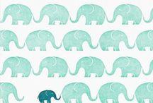 Elephants kick ass / by Charli