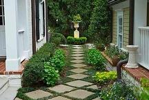 Motivational Gardening / by Sarah Morrow