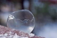 Winter Fun / by Shannon Hanley