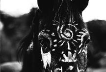 Totem / Because we see our souls in their eyes / by Annelise Stys