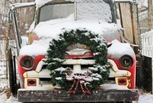 Christmas / by Heidi Jaster