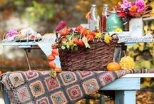 Autumn Joy / by Heidi Jaster