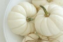 pumpkins / by Candice Deutz