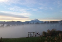 Mt. Hood/Columbia River Gorge