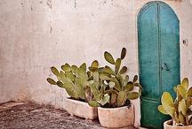 inspiración México / by Candice Deutz