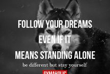 Dream's / Someday..
