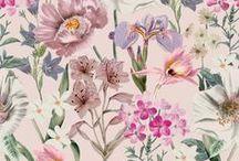 prints & patterns