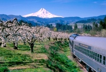Trails to Feast: Old West to New West / A road trip from Pendleton and the Walla Walla Valley hamlet of Milton-Freewater to Hood River and Timberline Lodge.