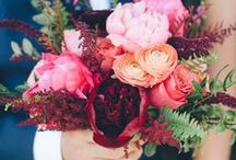 FLOWERS / peonies, roses, and daisies, oh my!