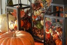 Fall / by Elizabeth Bailey