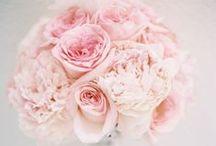 Pink / Pink Wedding Inspo