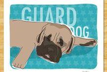 My English Mastiff / This is a board following the growth and life of my new English Mastiff pup, Saban. #EnglishMastiff