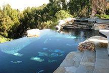 pools / by Marianne Igoe