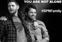 Supernatural / Saving People, Hunting Things / Carry on my wayward son / You Are Not Alone! # spnfamily / by Mercedes