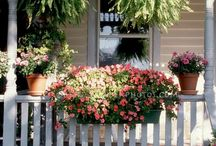 front porch / by Cathy Bybee