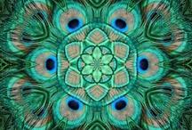 Mandala & Tree of Life