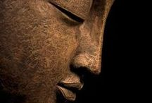 Buddha / by Melody Holcomb-Hockin