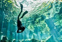Travel / by Sabrina Hilbrink