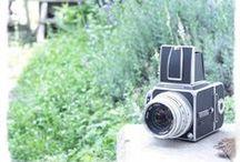 . Camera! Camera! Camera! / by Yukihiro Yoshida