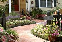 Garden & Outdoor Living / by Jamie Dyck