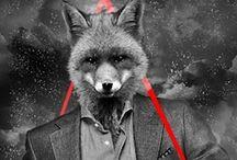 fancy foxxes