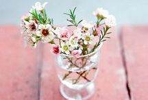 t o k i . h a n a / time flower / by Yukihiro Yoshida
