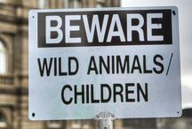 1Signs: Animals, Beware! / Leave the animals alone. They are most and smelly and don't need to be bothered by your sorry self. Don't be an idiot. You could get hurt.  / by Minnie