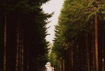 wanderlust  / by Samantha Lurie