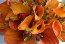 Wedding Flowers- Orange