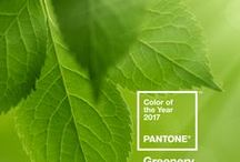 2017 PANTONE Color of the Year - Greenery for Weddings / Wedding Inspiration for 2017 Pantone Color of the Year - Greenery 15-0343