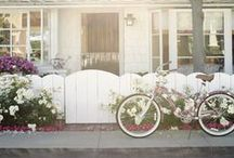 Bicycle Dreams / Whenever I see an adult on a bicycle, I have hope for the human race. ~ H.G. Wells