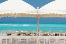 Beach Wedding Loving