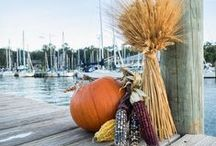 Autumn in the South / A beautiful collection of autumn themed decorating, recipes and more . . . Southern style!