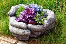 ♥ Growing my Garden ♥ / by Peggy Martin-Lenzing