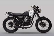 Lady Moto