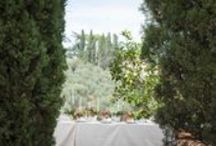 Wedding Poggio San Felice, Jardin Divers Flowers / Flowers by Jardin Divers www.jardindivers.it @jardindivers  wedding, tuscany wedding, wedding inspiration, real wedding, wedding in florence, italian wedding, wedding in italy