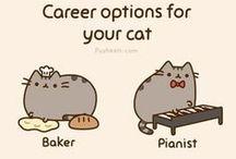 Career / Tips on how to #LeanIn Feminist Feline-style.