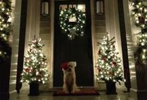 Holiday Home Decor / by Courtney Wells